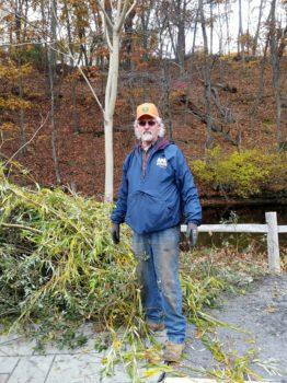 Keith Hainley with knotweed, an invasive plant, removed from a Cumberland location